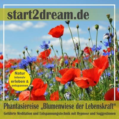 Phantasiereise: Blumenwiese der Lebenskraft
